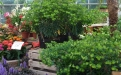 Le Jardin du Rudel